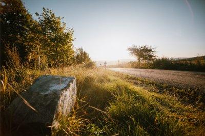 _MG_1824-hory_bory-064.jpg
